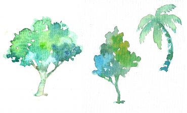 Watercolour painting of three trees